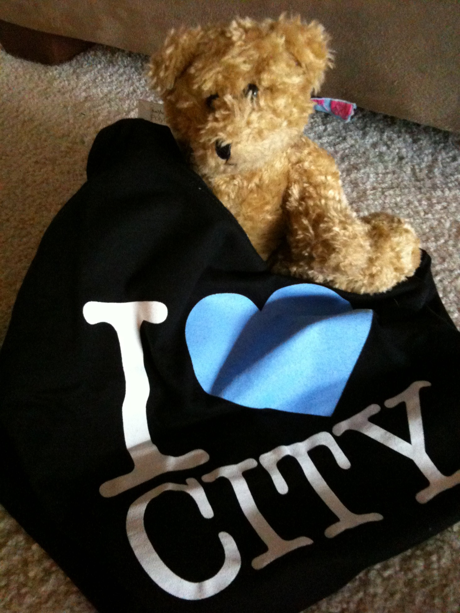 Lucy's Favourite Team - City!