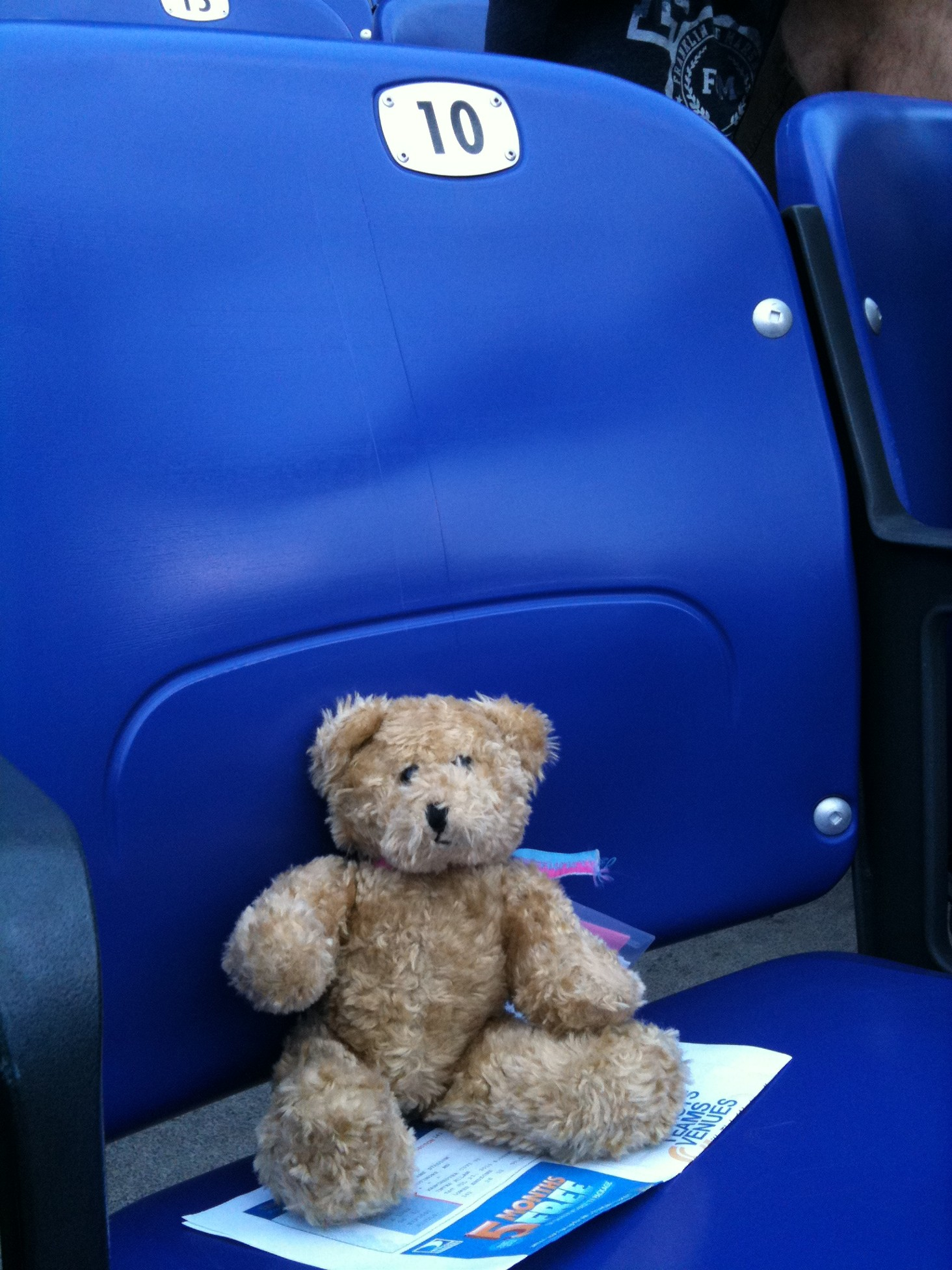 Lucy's Own Seat Ready for the Match